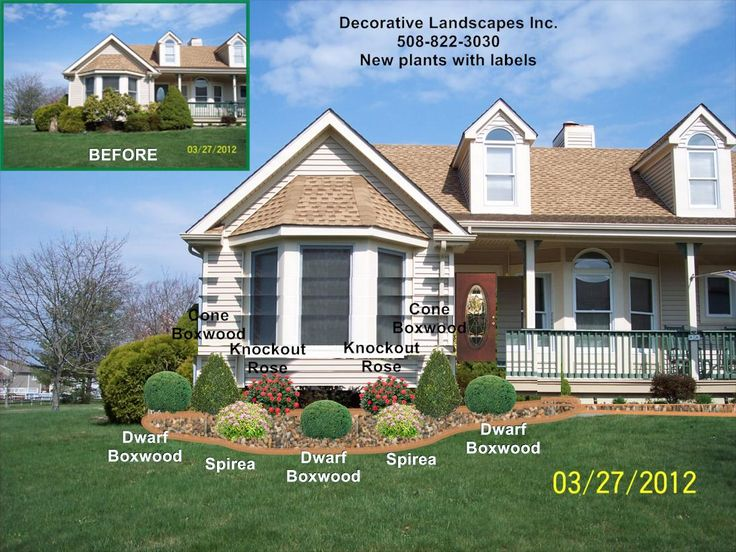 19 best front landscaping ideas images on pinterest for Front window landscaping ideas