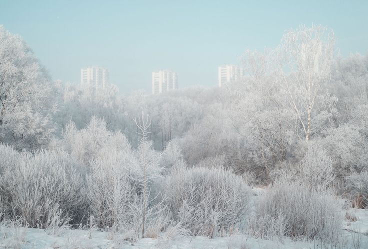 Unreal city: Moscow's suburbs as you've never seen them before —The Calvert Journal