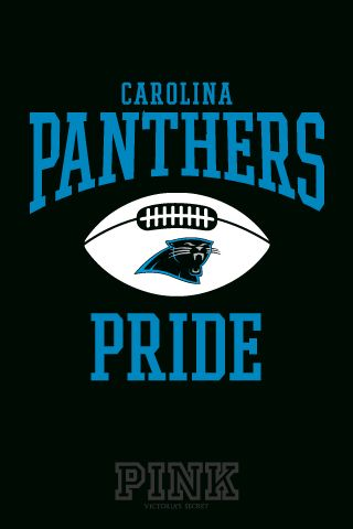 NFL Carolina Panthers Cam Newton 1 Jersey Shirt Polymesh 2018 Football
