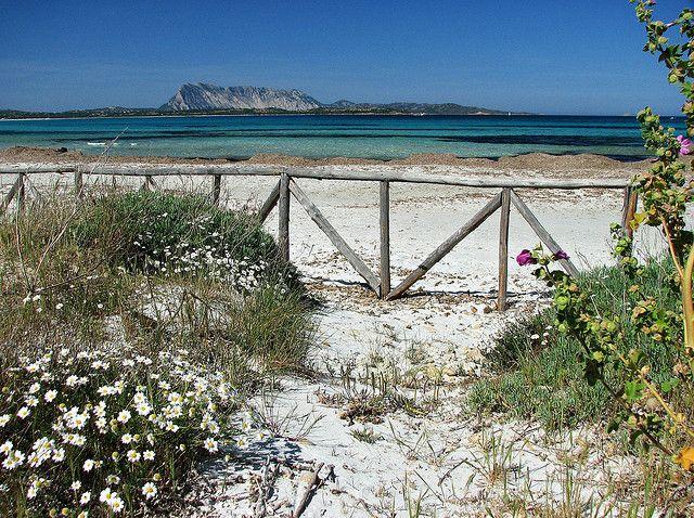 "La famosa spiaggia ""La Cinta""  San Teodoro - Sardegna (Italy)"