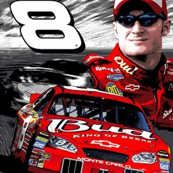 16 Best Nascar Kids Bedding Images On Pinterest
