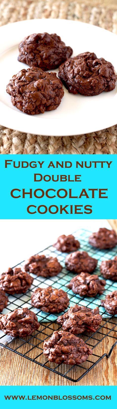 Gooey chocolate, chocolate chunks and crunchy pecans make these almost flour-less Fudgy and Nutty Double Chocolate Cookies pure decadence! Thick, rich and irresistible. These cookies are a chocolate lover's dream! via @https://www.pinterest.com/lmnblossoms/