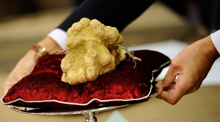 Russian billionaire Vladimir Potanin bought a 4 pound, $95,000 white truffle from NYC restaurateur Nello Balan at the very beginning of this...