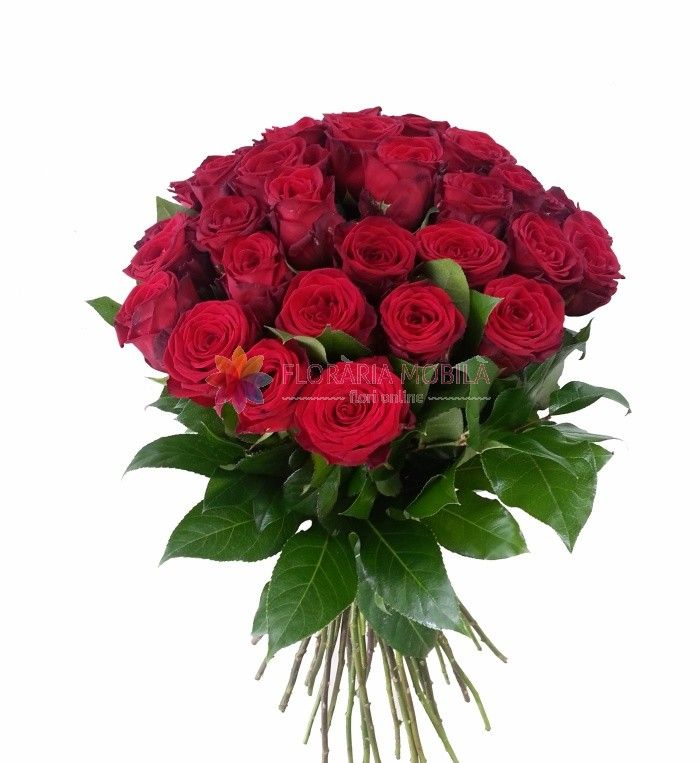 buchet 35 trandafiri rosii35 red roses bouquet - Luxury Collection