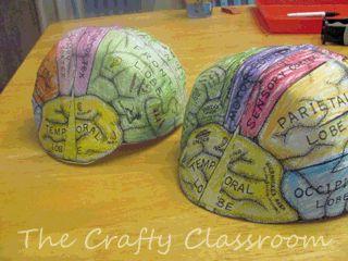 human body activities - brain hat, neurons art, egg carton spinal cord,