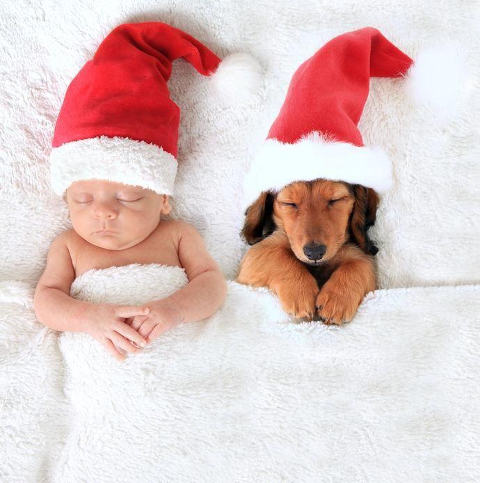 Újszülött, karácsony