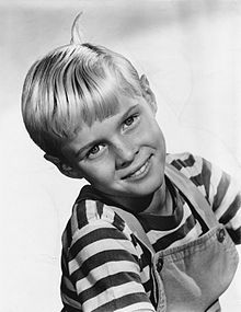 Jay Waverly North (born August 3, 1951) is an American actor. Beginning a prolific career as a child actor at the age of six, North became a household name during the early 1960s for his role as the well-meaning, but mischievous, Dennis Mitchell on the CBS situation comedy Dennis the Menace, based on the comic strip created by Hank Ketcham.