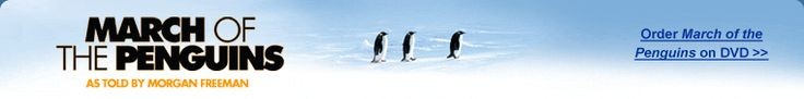 National Geographic Feature Film: March of the Penguins Game