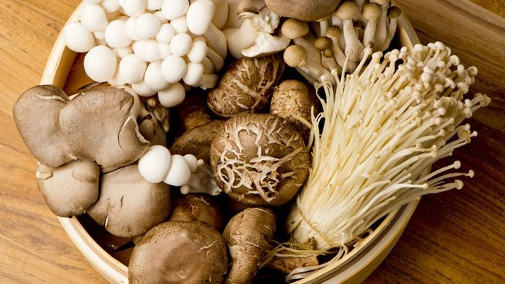 Mushrooms are a rich source of Vitamin D 5 nutrients that can boost your brain power