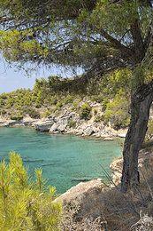 Greek Island Holiday rental, Astero Apartment,
