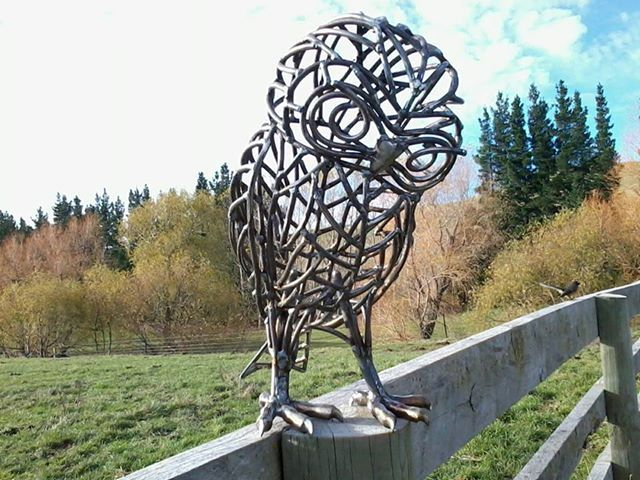Laughing Owl a now-extinct New Zealand Owl species. Steel sculpture by Sharon Earl, New Zealand.  www.sharonearl.com Twitter @weldagirl Instagram sculptor.sharonearl