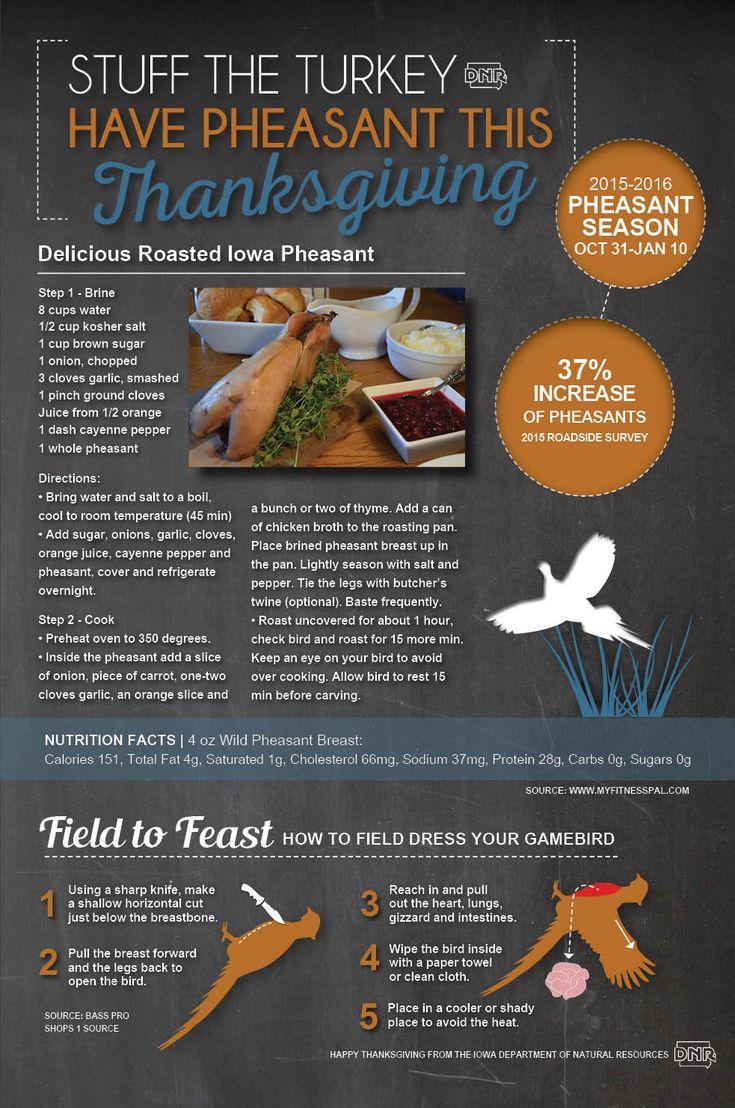 Stuff Turkey This Thanksgiving And Serve Pheasant Instead! Delicious  Roasted Pheasant Recipe  Iowa Dnr