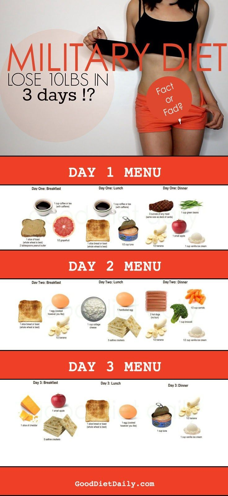 Best 25+ 3 day diet plan ideas on Pinterest | Military ...