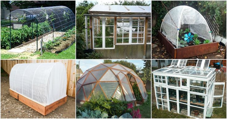 Do you have a greenhouse? Do you know how great greenhouses are? If you don't have one, and you don't want to spend a small fortune buying one, I've got a great list of DIY greenhouses for you. I found 20 of the easiest and cheapest greenhouses that you will want to make right away. Many of...