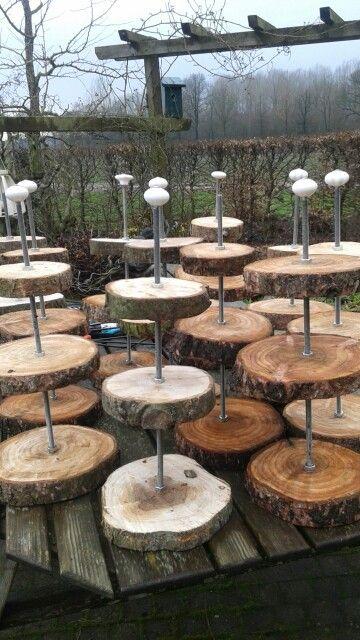 25 beste idee n over hout plakken op pinterest houten for Boomschijven decoratie