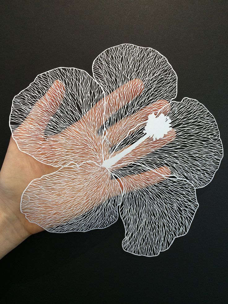 Paper-cutting artist Maude White (previously) continues to astound us with her painstaking illustrations cut from single sheets of paper. Limited to only negative and positive space, she explores poetic compositions of line and shape as she renders each piece with a knife. White is currently working