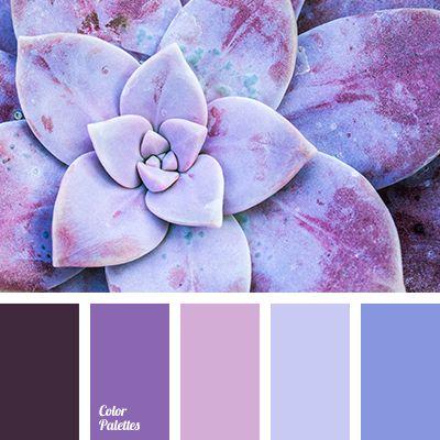 Color Palette #2892