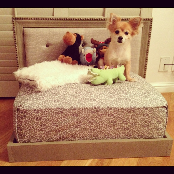 17 best images about four paws on pinterest dog beds for Self made headboards