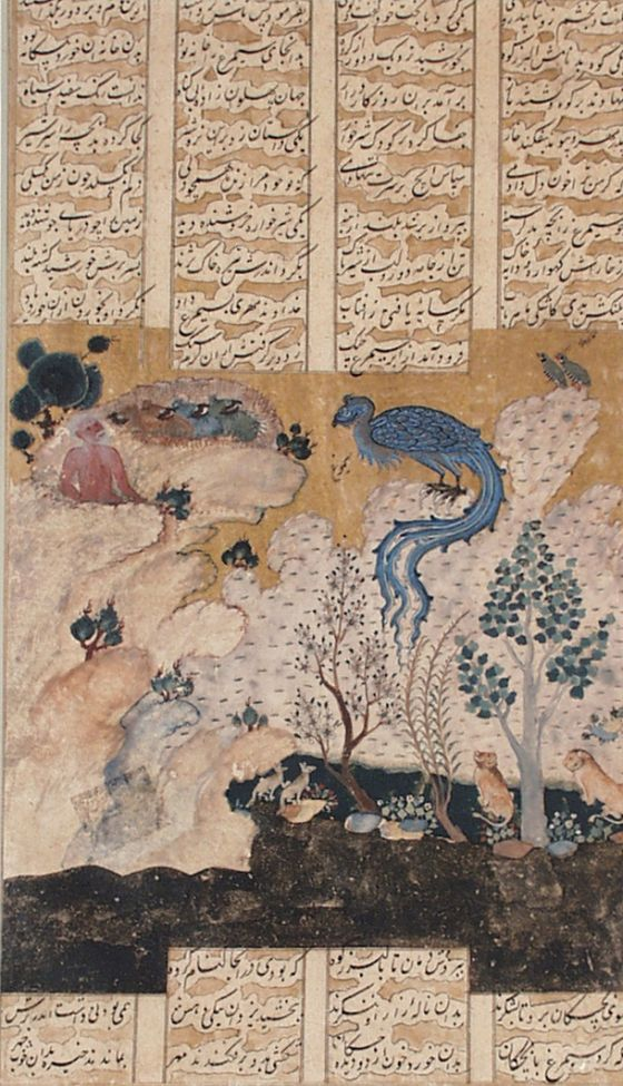 Zal in the Nest of Simurgh, Page from a Manuscript of the Shahnama (Book of Kings) of Firdawsi Iran, Qazvin, circa 1560-1565 Ink, opaque watercolors and gold on paper 9 13/16 x 5 11/16 in. (24.77 x 14.29 cm) LACMA Collections