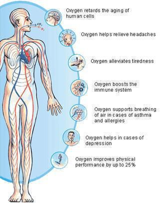 Suffer from poor memory, fatigue, concentration, stress, irregular sleep or low immune system? Oxygenating your body is important!