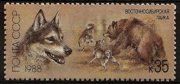 осточносибирская лайка (на марке номиналом 35 копеек) - русская порода собак и самая крупная из охотничьих лаек, использующаяся для охоты на дичь, пушного зверя, крупного зверя.