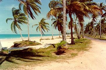 matras beach (image credit:  lim keng tjoe)