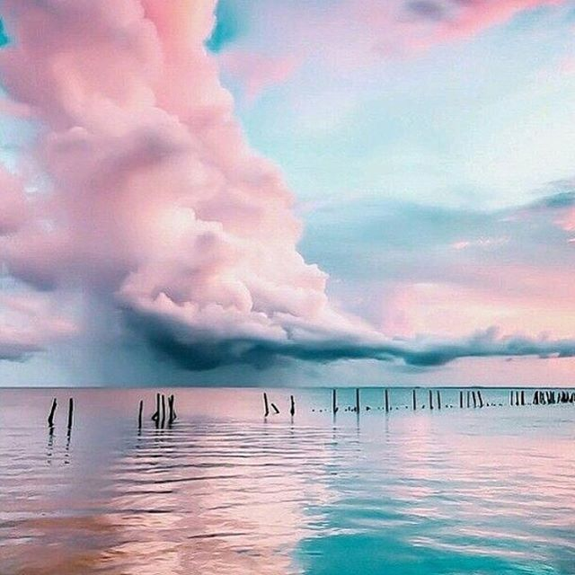 "1,915 Likes, 14 Comments - ARE YOU AM I (@areyouami) on Instagram: ""Pink skies #ayai"""