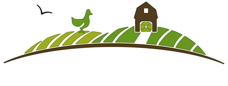 The Poultry Hatchery – Huge selection of Organic Day Old Chicks, Laying Hens (Chickens), Poultry and Exotic Fowl, Geese, Ducks, Turkeys, Guineas, Meat Birds and supplies available for sale.