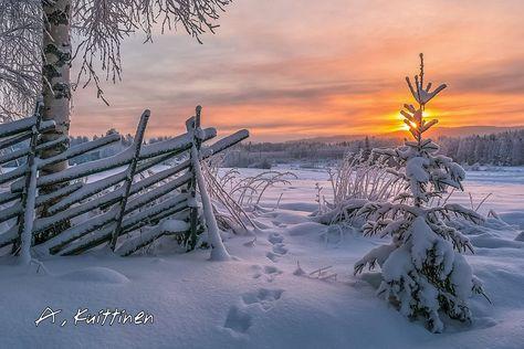 Katso, miten upealta Suomen luonto näyttää eri vuodenaikoina! – 29 kuvaa   Vivas Talvi photo:Asko Kuittinen