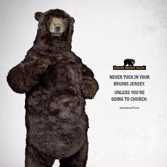 Bruins Bear Rules of LifeBruins Babyyyyi, Boston Red, Bruins Bears, Bears Rules, Bad Ass, Bruins Wall, Boston Bruins, Heart Resident, Ass Boston