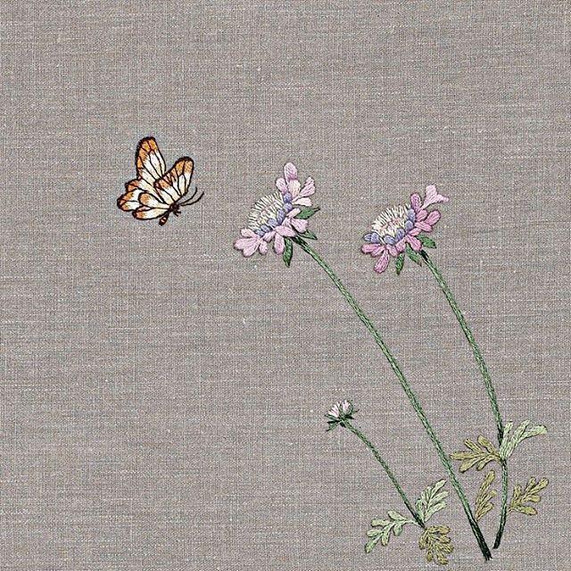 #야생화자수 #솔체꽃 #꿈소 #꿈을짓는바느질공작소 #자수 #embroidery #handembroidery #embroideryart #sewing #needlework #stitchart #dmc #wildflowers #scabiosa #scabiosatschiliensis #handmade