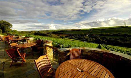 I'd heard of Camel Valley Winery's reputation (award winning sparklers) since I first moved out of Cornwall over a decade ago. I was glad after all this time to get the chance to visit and meet Bob and Sam Lindo, the father and son winemaking team.... http://www.snooth.com/articles/spotlight-camel-valley-winery/