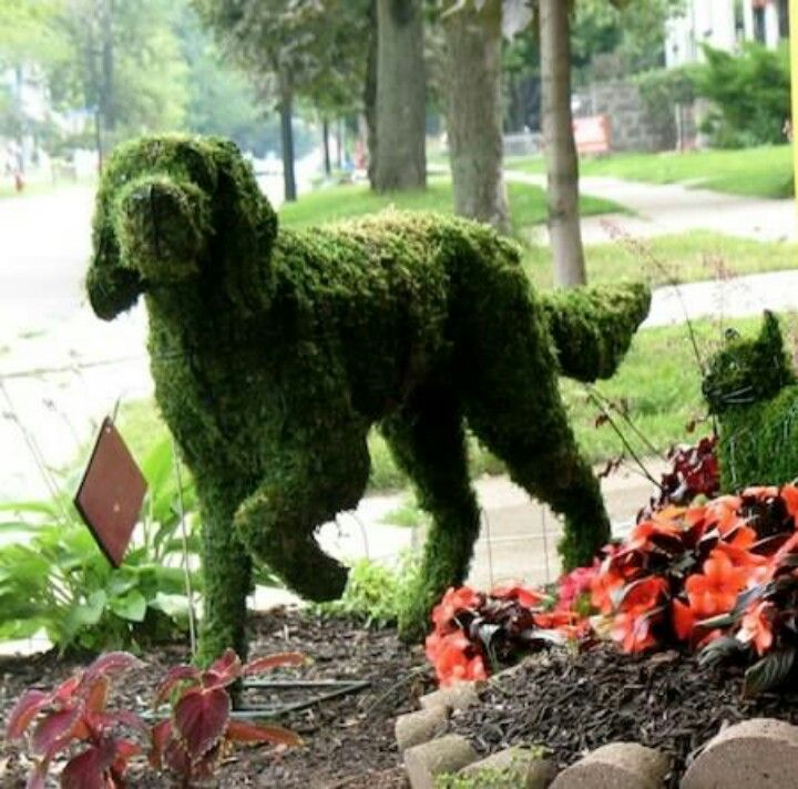 Dog Topiary, aahhh too cute!!! In honor of the best, best friend anyone could have <3.: