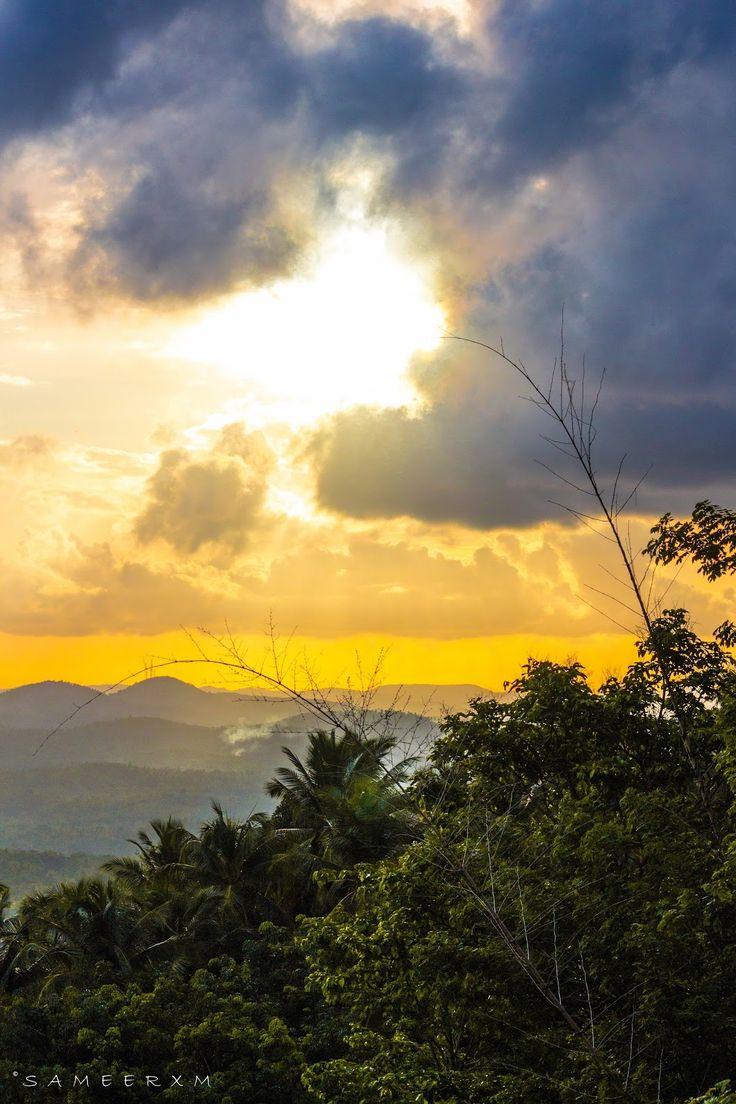 Sunset - My village - Kerala - India  #sunset #village #nature #photography #canon #Kerala #nature #sameerxm #landscape #India #photography  #tree #sky#... - Sameer M - Google+