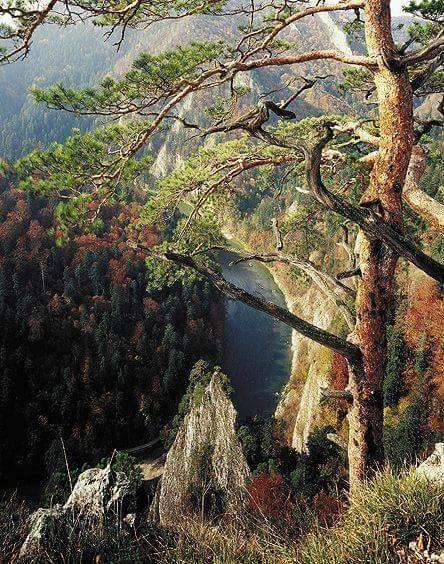 Pieniny Mountain, Poland