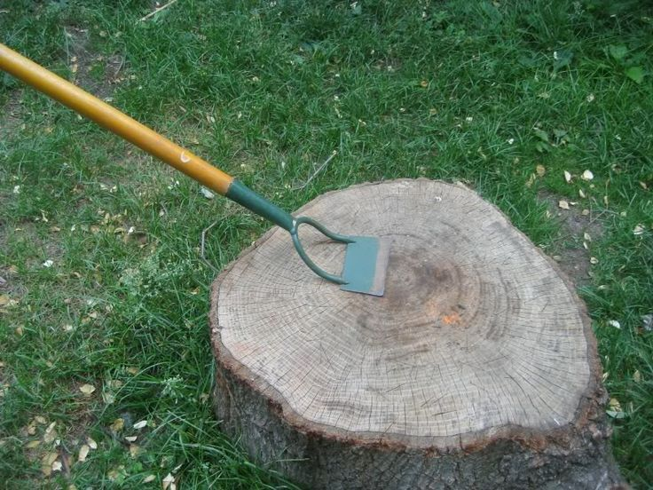 Garden tool the dutch hoe great for weeding scrape for Gardening tools for weeding