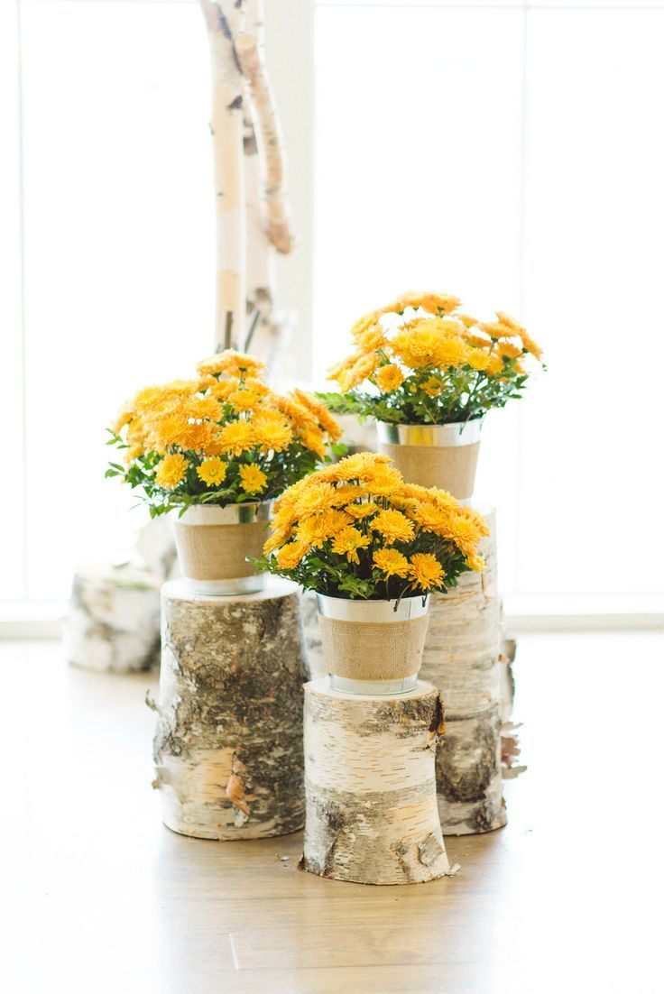 Potted flowers on logs - so chic #wedding #gardenparty #weddingdecor #flowers #rustic