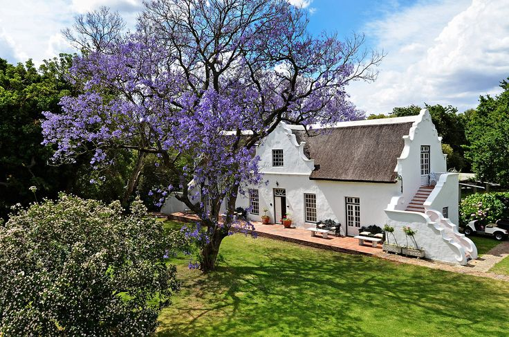 Near Cape Town, a 300-Year-Old Farm - Slide Show - NYTimes.com