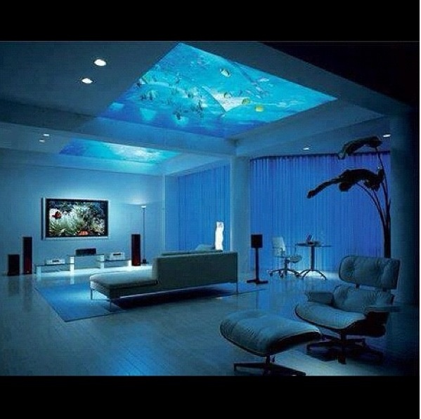 AWESOME room with an AWESOME aquarium roof. AWESOME.