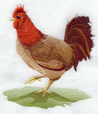 Fashion Rooster 2 design (M1594) from www.Emblibrary.com