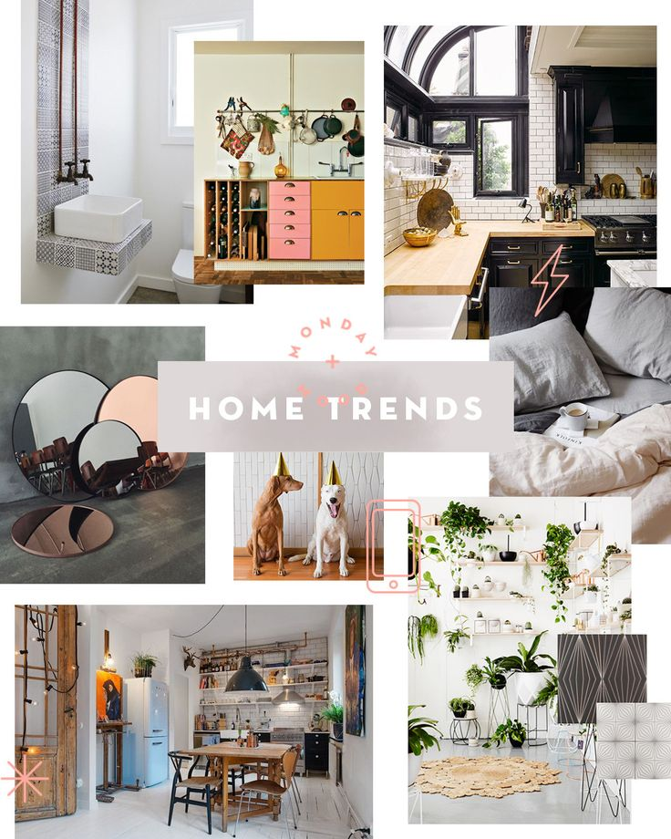 Beautiful Monday Mood: 2016 Home Trends Via Design Sponge (including Houseplants +  The Sill)