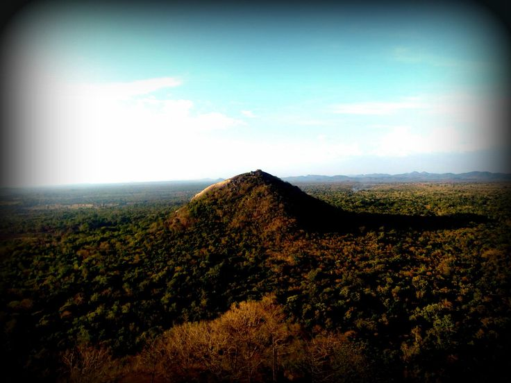 View from the top of Sigiriya rock.