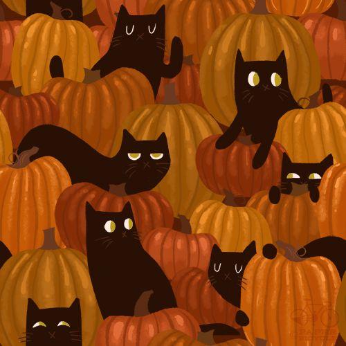 halloween backgrounds tumblr - Buscar con Google