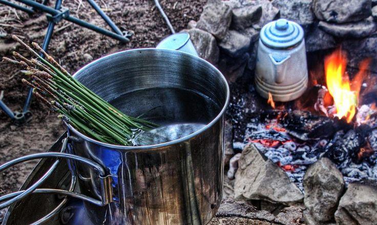 Akwesasne mohawk 'Kick the cold out of ya' tea' (Native American Recipe)