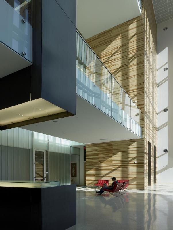 Buildings should be designed to allow the natural light it.
