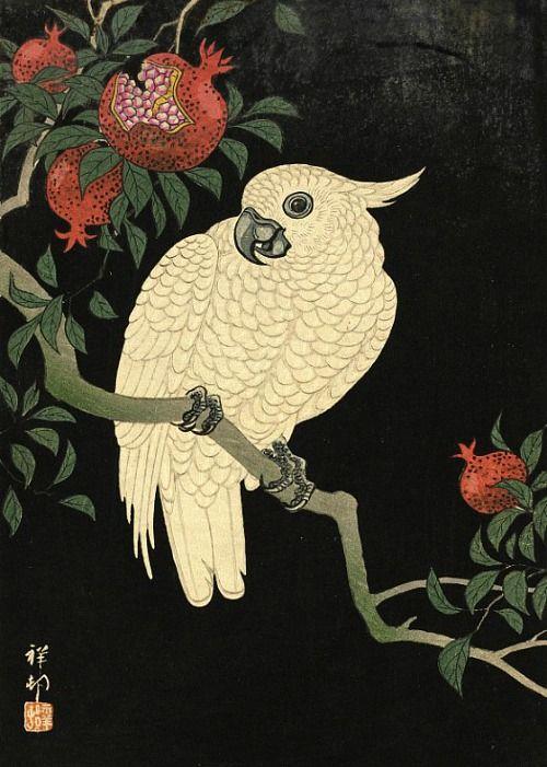 Ohara Shōson Cockatoo and Pomegranate 20th century - still life quick heart