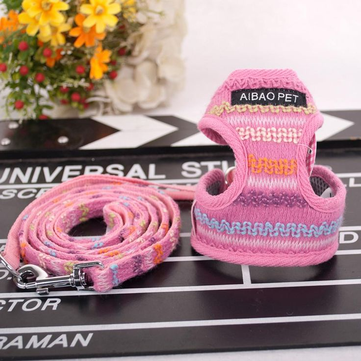 Cute Small Dog Puppy Harness and Walking Leash Leads Set - free shipping worldwide