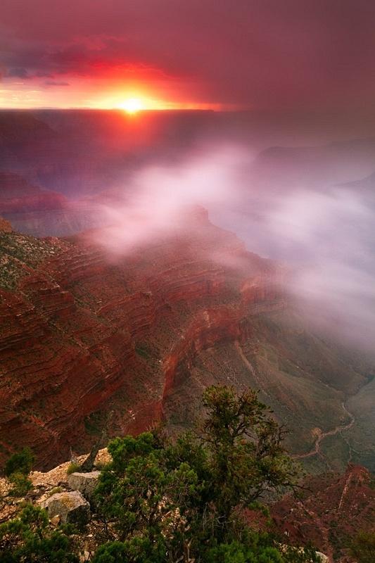 Canyon Apparition by Adam Schallau: Canyon Mists, God Beautiful, Schallau Photography, Colors, Beautiful Places, Parks, Adam Schallau, Grand Canyon, Canyon Apparit