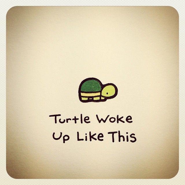 Turtle Wayne @turtlewayne Turtle Woke Up Li...Instagram photo | Websta (Webstagram)