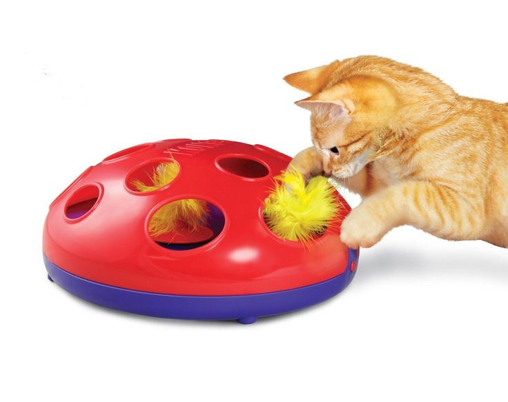 KONG GLIDE 'N SEEK INTERACTIVE TOY FOR CATS - Thrill your cat with the KONG Glide 'N Seek toy!